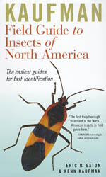 FIELD GUIDE TO INSECTS OF NORTH AMERICA