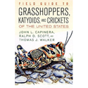 GRASSHOPPERS, KATYDIDS AND CRICKETS OF THE UNIATED STATES